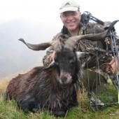Feral Wild Goat Hunts